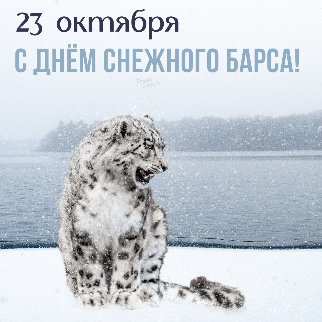 Международный день снежного барса