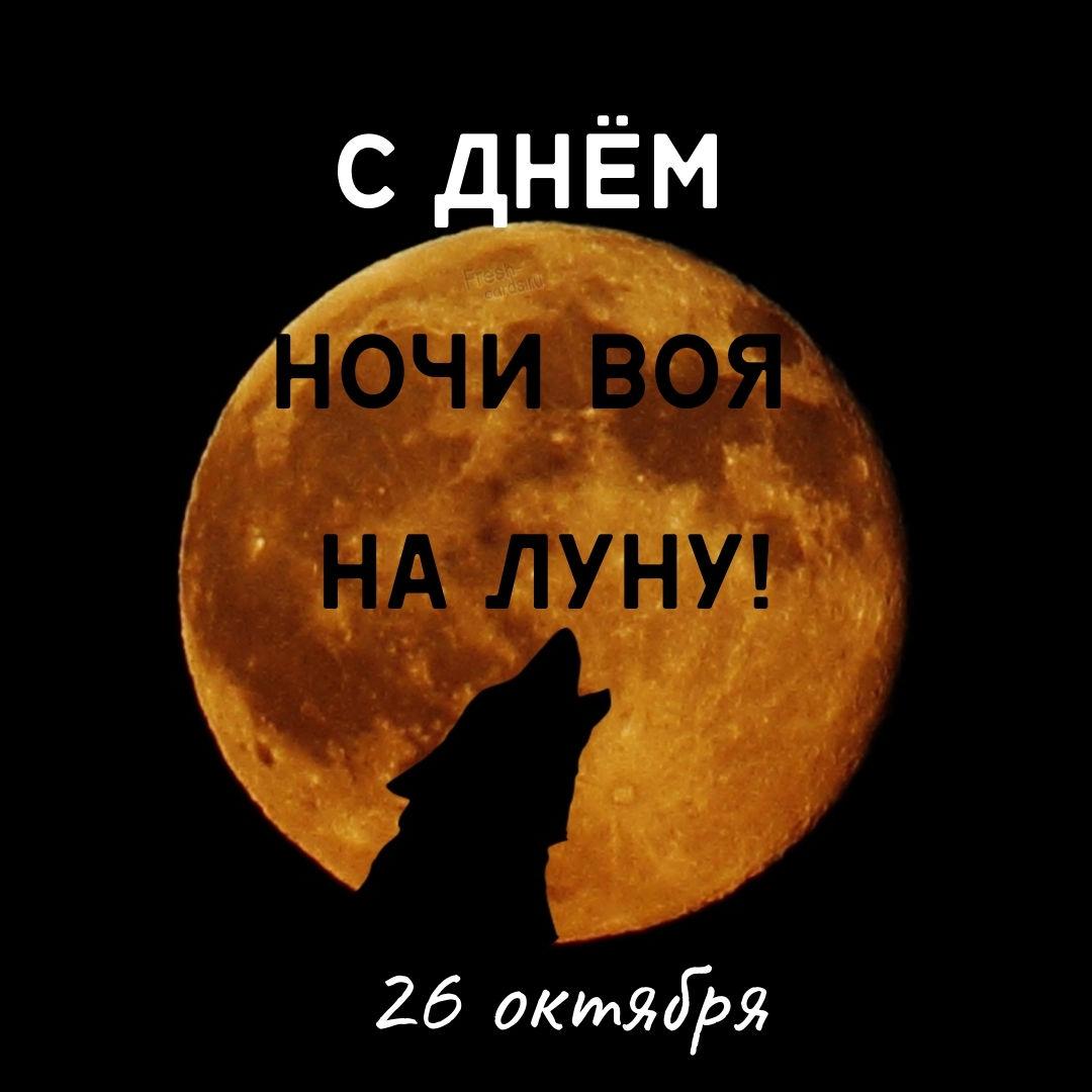 Всемирный день ночи воя на луну