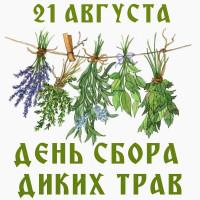 День сбора диких трав